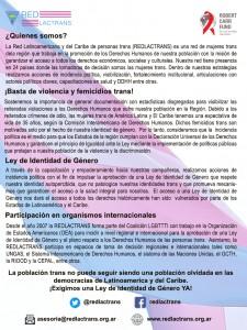 Folleto Institucional REDLACTRANS - Dorso